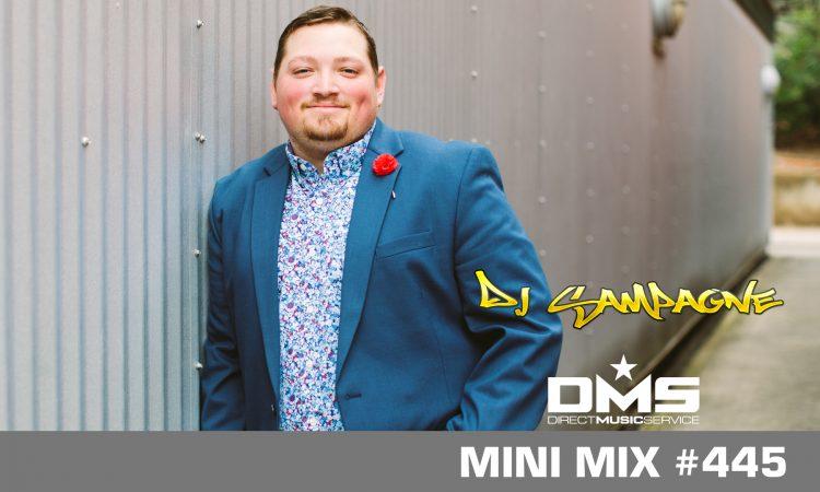 DMS MINI MIX WEEK #445 DJ SAM LUBA